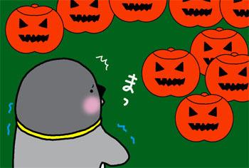 2008-10-23.jpg