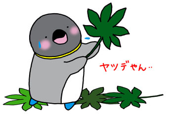 2008-9 yatsude.jpg