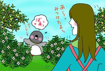 2009-5-mitsuketa.jpg