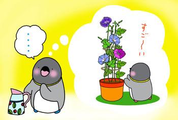2009-6-OMOIDASU.jpg
