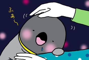 2009-6-yoshiyoshi neterune.jpg