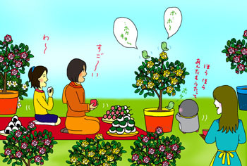 2010-6-iikanji.jpg