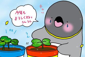 2010-8-kotoshimo.jpg