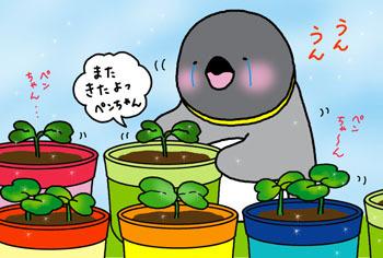 2010-8-matakitayo.jpg
