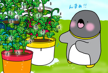 2010-9-seichou.jpg