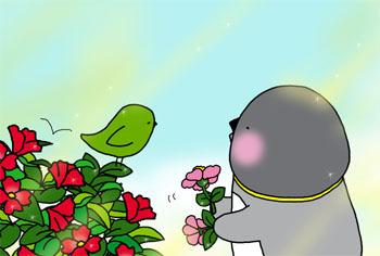 2011-11-iyoiyo.jpg