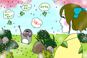 2011-8-dekitane.jpg