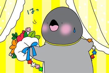 2013-11-hatssuu.jpg