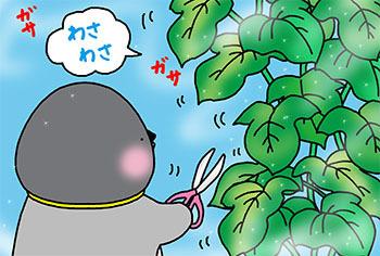 2015-4-wasawasa.jpg